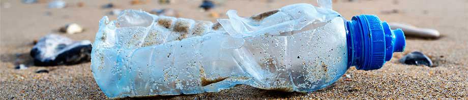 マイクロプラスチックの健康上のリスクを解明